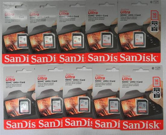 Ten 16GB SDHC cards