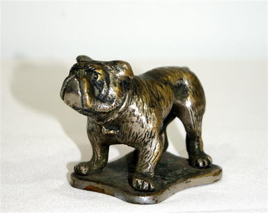 A 1920s nickel plated bulldog mascot