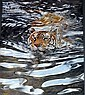 Alan M Hunt (b. 1947) South African Swimming Tiger Offset print on canvas ed:17/299, Alan M. Hunt, Click for value