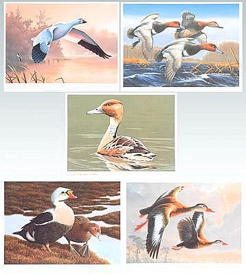 Six Federal duck stamp prints 1986-91: