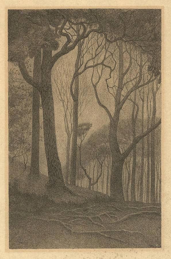 Moulijn, S. (1866-1948). Bomen. Lithograph, 1898,