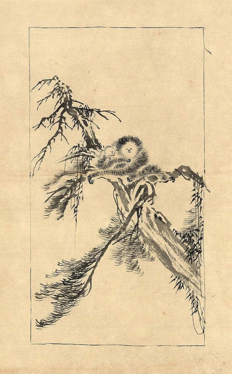 Tôho (1875-1930). (Gibbon with pet on the branch of a tree). Drawing, brush