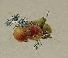 Anonymous (late 19th cent.). (Fruits and flowers).