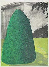 Abrahams, I. (b.1935). Suburban Shrub by Day and