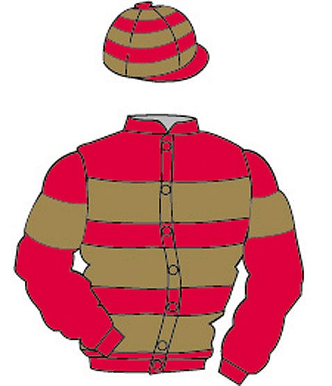 British Horseracing Authority Sale of Racing Colours: SCARLET, GOLD ho