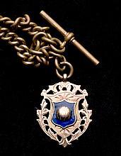 9 ct. gold & enamel Darlington Football medal 1907-08,  inscribed DARL
