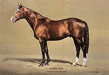 A Susan Crawford limited edition print of the racehorse & stallion Sadler's