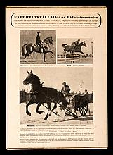 Official Report of the Stockholm 1956 Equestrian Olympic Games