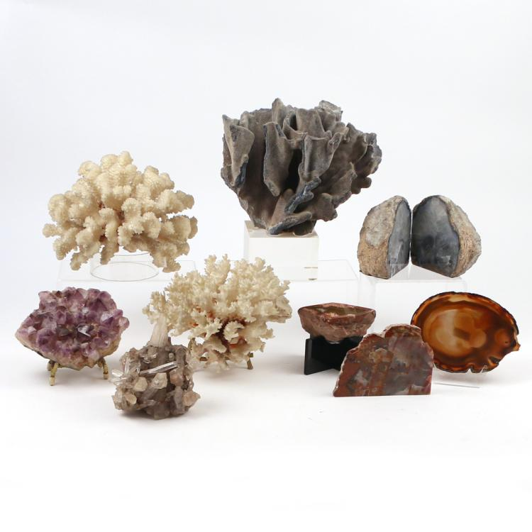 (10pc) GEODES AND CORAL