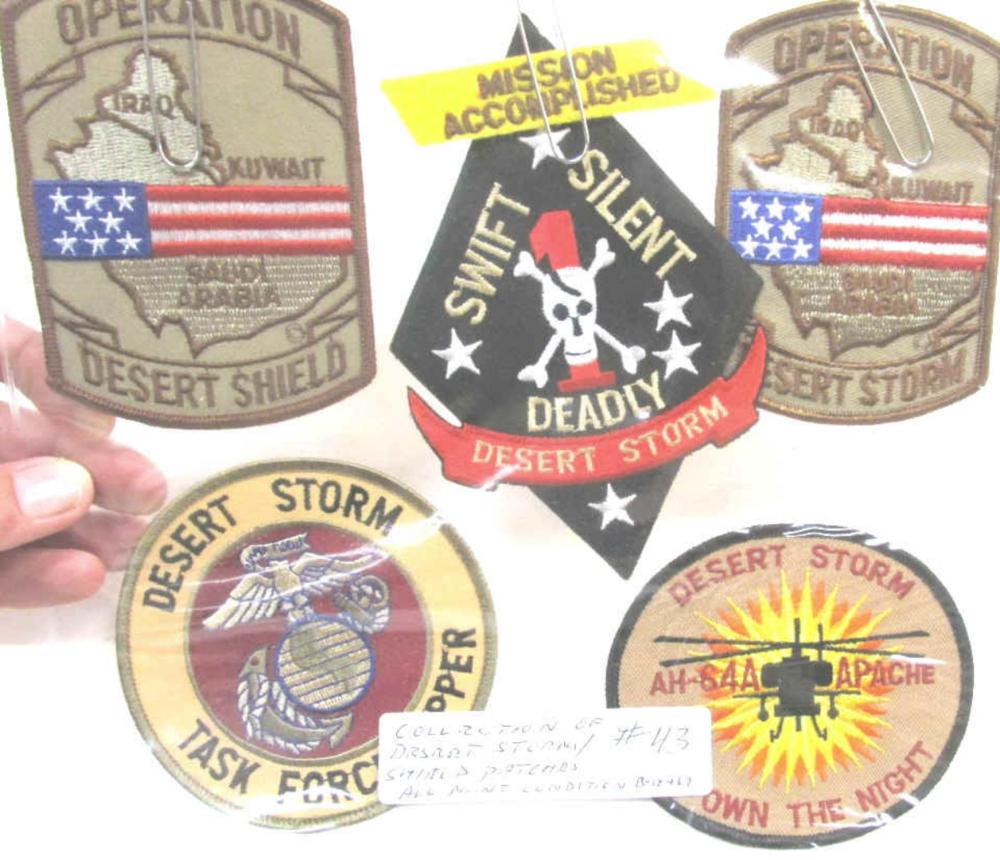 Collection Of Desert Storm/ Shield Patches