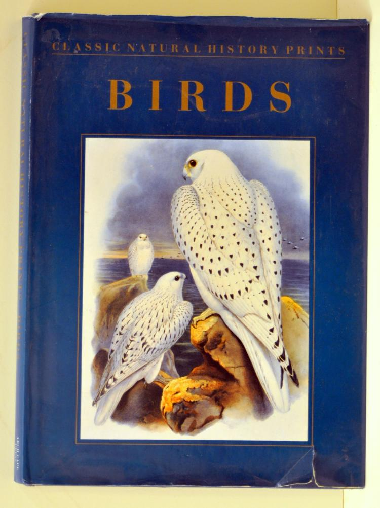 Birds book Natural History of Birds