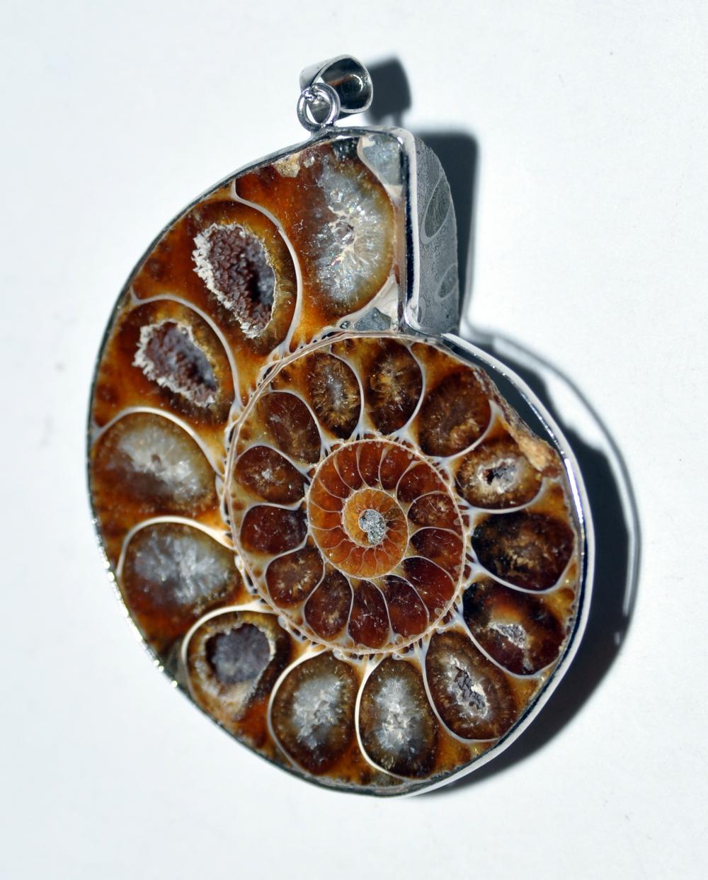 Ammonite pendant bezel set fossil