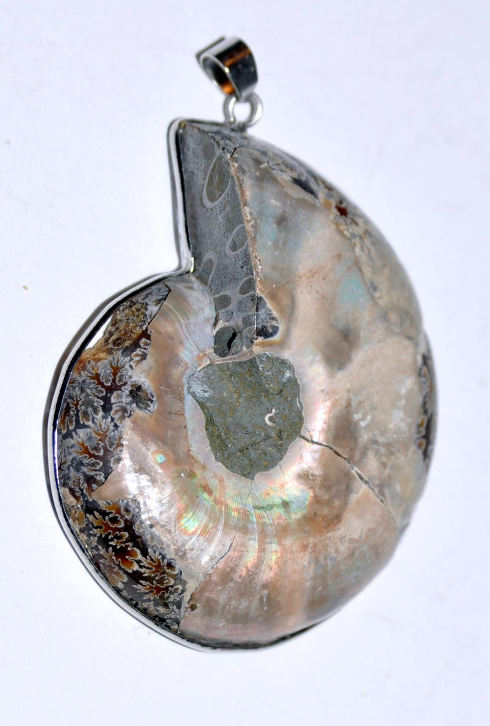 Lot 173: Ammonite pendant bezel set fossil