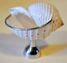Footed seashell dish natural