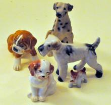 Vintage dogs collection dalmation