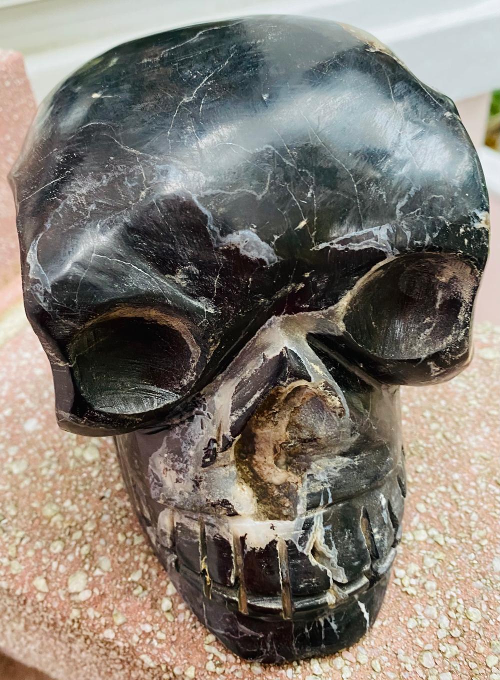 Petrified wood skull lifesize