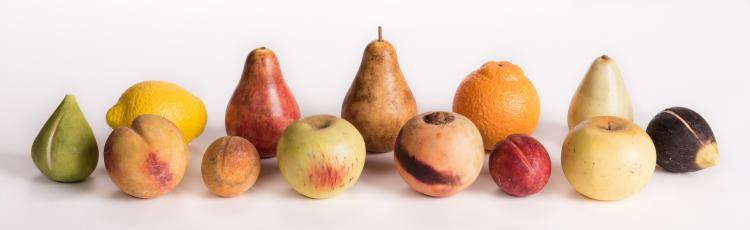 Group of Stone Fruit, 13 pieces