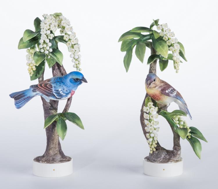 Pair Dorothy Doughty Birds, Lazuli Bunting