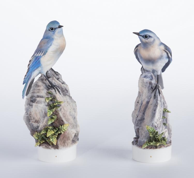 Pair Dorothy Doughty Mountain Bluebirds