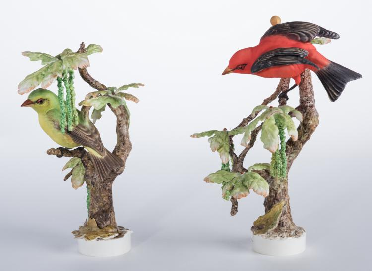 Pair Dorothy Doughty Scarlet Tanagers