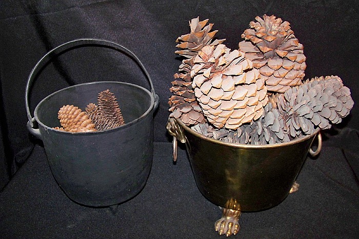 2 Pots Filled with Pine Cones