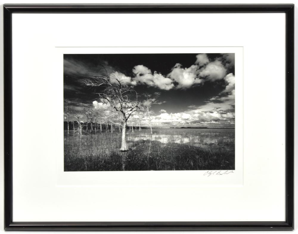 Clyde Butcher 'Gannet Strand' Photograph
