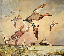 Bolduc, Yvonne (1905-1983)  Envolee de canards