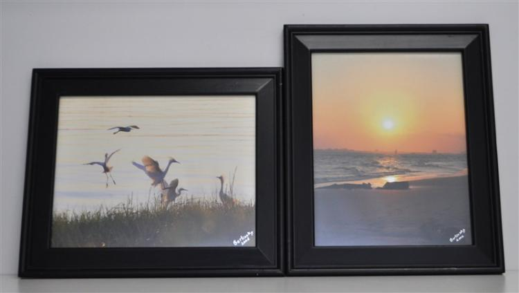 2 FRAMED LOW COUNTRY PHOTOGRAPHS