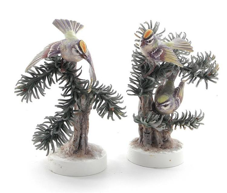 Pair Dorothy Doughty Goldens Crowned Kinglet (2pcs)