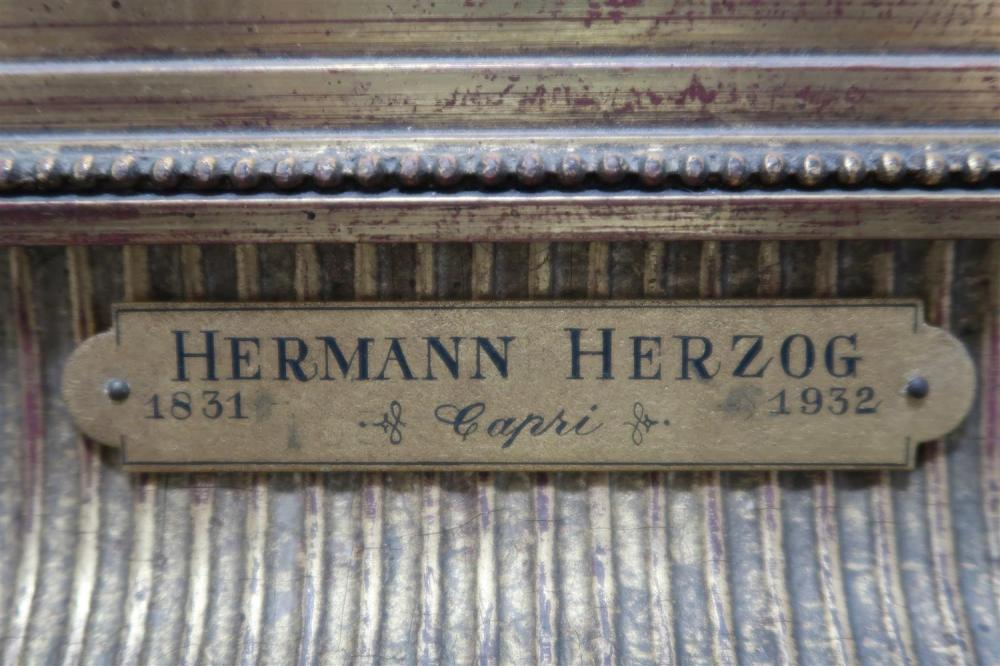 Hermann Herzog