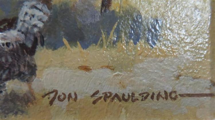 Donald Spaulding