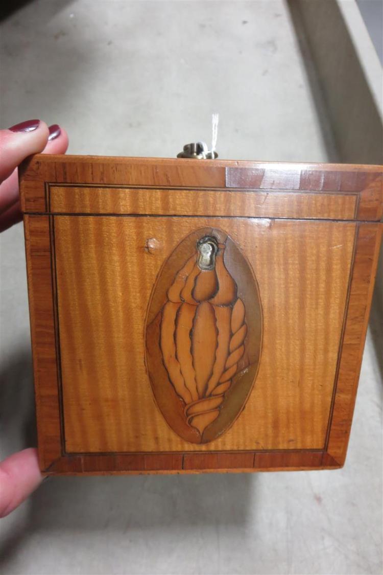 English shell-inlaid mahogany tea caddies (2pcs)