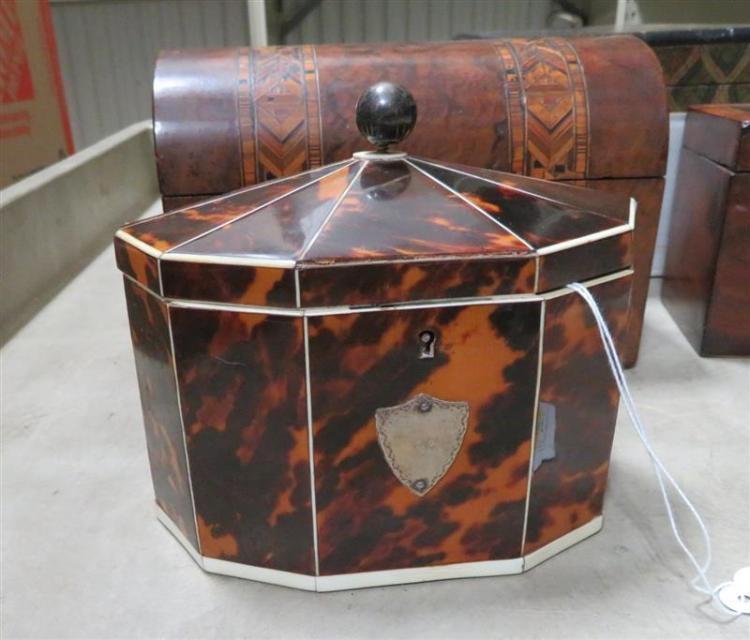 English shell-clad tea caddy