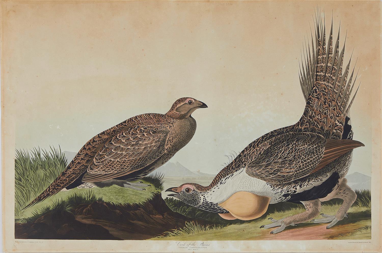 John James Audubon (after)