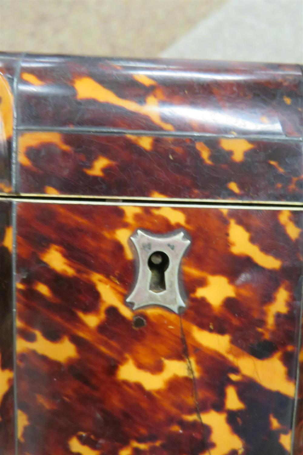 Regency tortoiseshell double tea caddy
