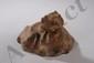 Figuration d'un dragon lové, gueule ouverte. Terre cuite à traces de polychromie. Chine. Dynastie Han.206 avant à 220 après JC.23x17cm.