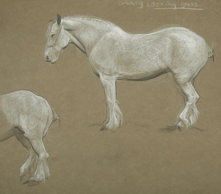 ESTELLA LOUISA MICHAELA CANZIANI (ENGLISH 1887-1964) ARR A Sheet of Studies of a White Horse Charcoal and white chalk on grey paper 49.5 x 57cm (19.5 x 22.5in) Unframed Together with A study of a female figure in medievel dress by the same hand Unframed (2)