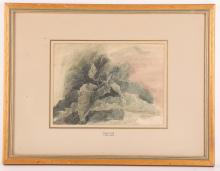 A collection of 7 botanical watercolours, including signed examples, all mounted, glazed and gilt framed (7).