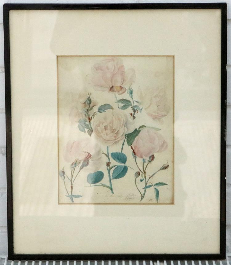 WATERCOLOUR - A 19th-century watercolour of a group of pink roses, with illegible signature, and inscribed,
