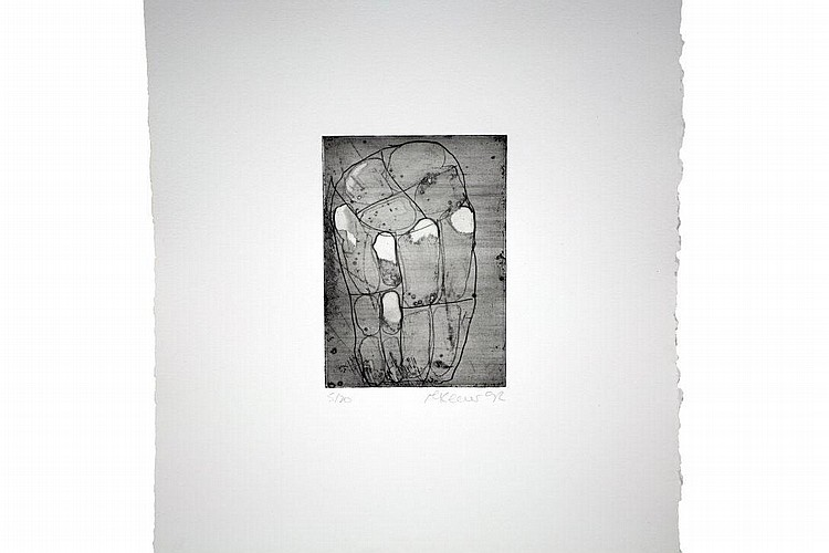 Ian McKeever Thirteen Etchings a folio, The Print