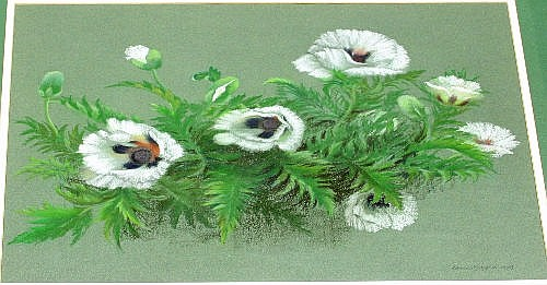 Dawn Cookson/White Poppies/signed and dated 1989/p