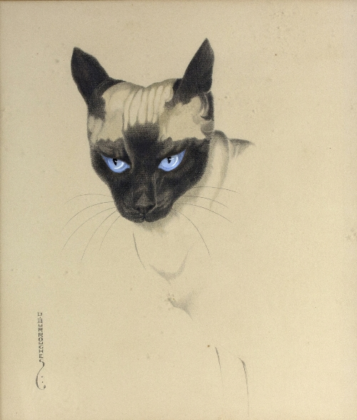 Dorothy Burroughes (British 1895-1963)/The Siamese Cat/signed/watercolour, 47cm x 40cm