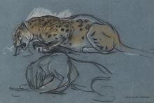 John Macallan Swan (British 1847-1910)/Crouching Leopard/signed/pastel on blue paper, 20cm x 29.5cm