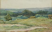 Constance Helen Greaves (British 1882-1966)/New Forest/signed/watercolour, 14.5cm x 21cm