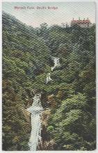 A quantity of picture postcards and RPs, including waterfalls, flowers and trees (approximately 210)