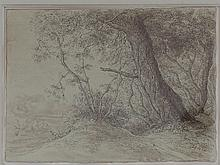 Gerald Ososki/Study of Trees/signed and dated G.