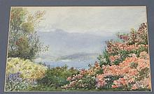 19th Century English School/Lake Codenalbia Alla