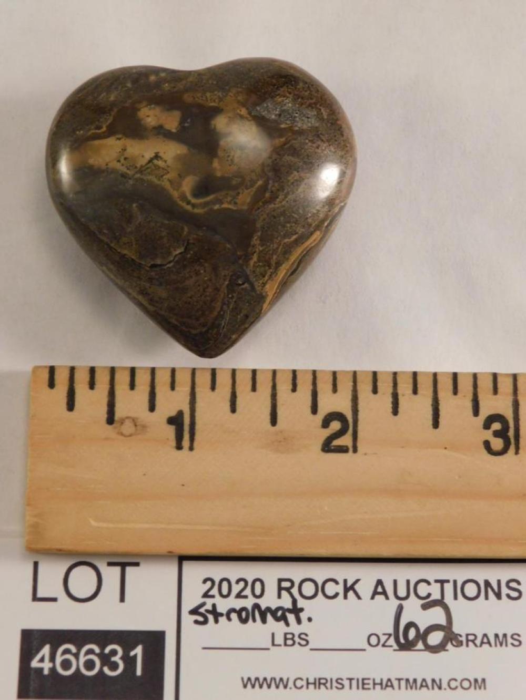 STROMATOLITE HEART ROCK STONE LAPIDARY SPECIMEN