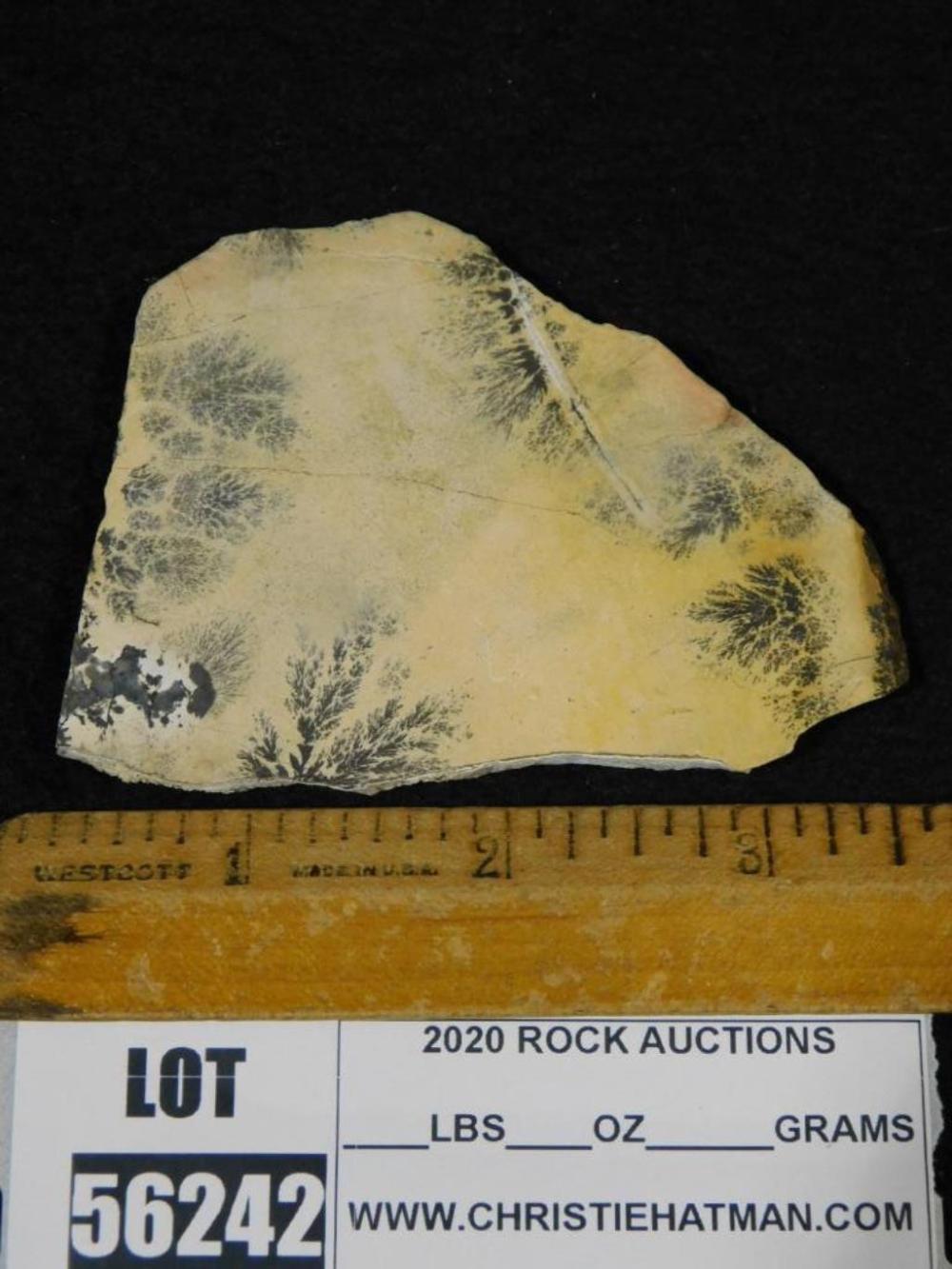 Rock Collections Forest Branches Lapidary Mineral Specimen Excellent Dendrite Rock Specimen Sale Price Dendritic Specimen