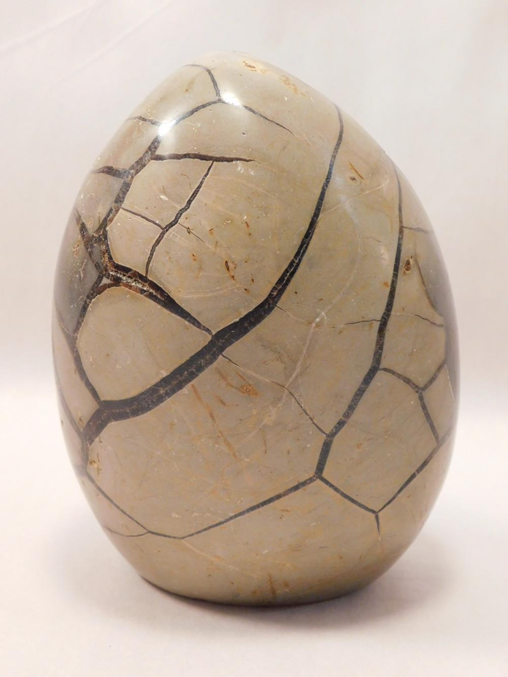 SEPTARIAN DRAGON EGG DRUZY EGG ROCK STONE LAPIDARY